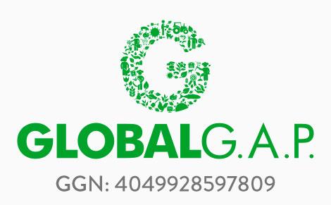 a-global_1